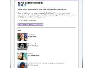 Turtle IsLAND Responds