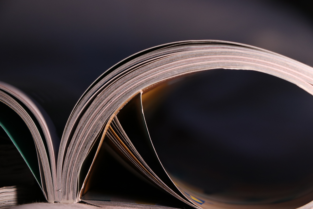 What does the future look like for literary magazines?